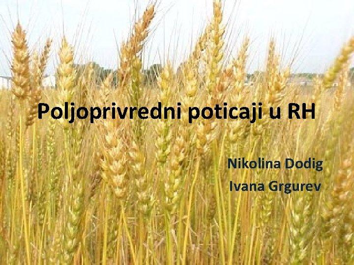 Poljoprivredni poticaji u RH Nikolina Dodig Ivana Grgurev
