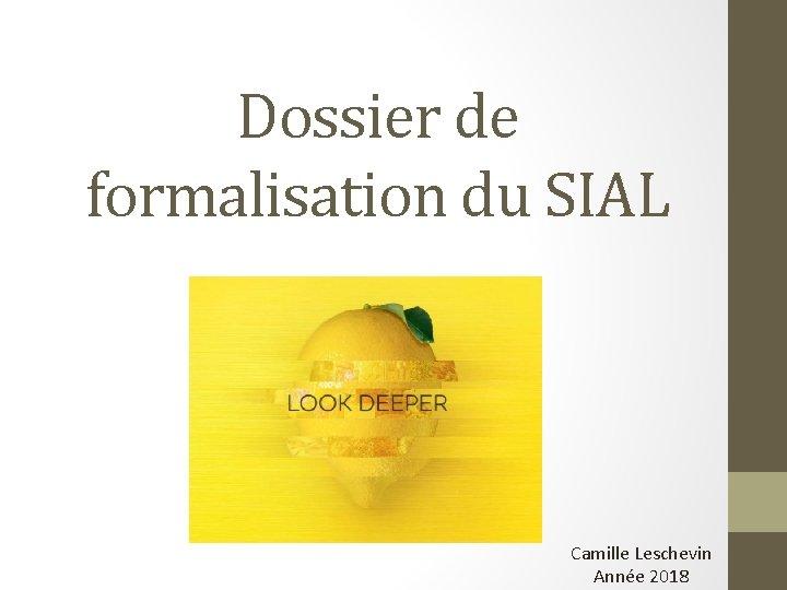 Dossier de formalisation du SIAL Camille Leschevin Année 2018