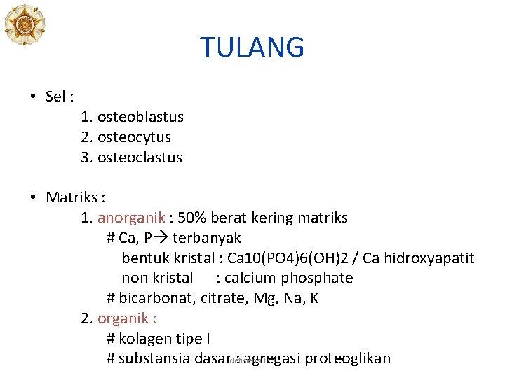 TULANG • Sel : 1. osteoblastus 2. osteocytus 3. osteoclastus • Matriks : 1.