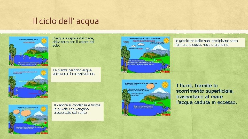 Il ciclo dell' acqua L'acqua evapora dal mare, dalla terra con il calore del