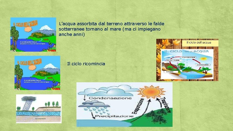 L'acqua assorbita dal terreno attraverso le falde sotterranee tornano al mare (ma ci impiegano