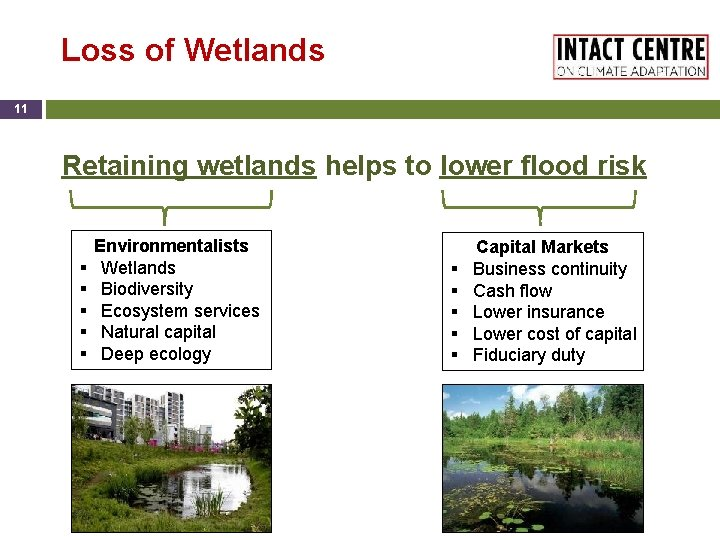 Loss of Wetlands 11 Retaining wetlands helps to lower flood risk § § §