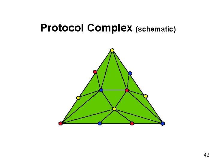 Protocol Complex (schematic) 42