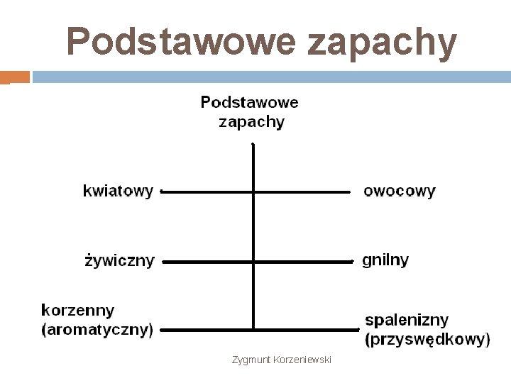 Podstawowe zapachy Zygmunt Korzeniewski