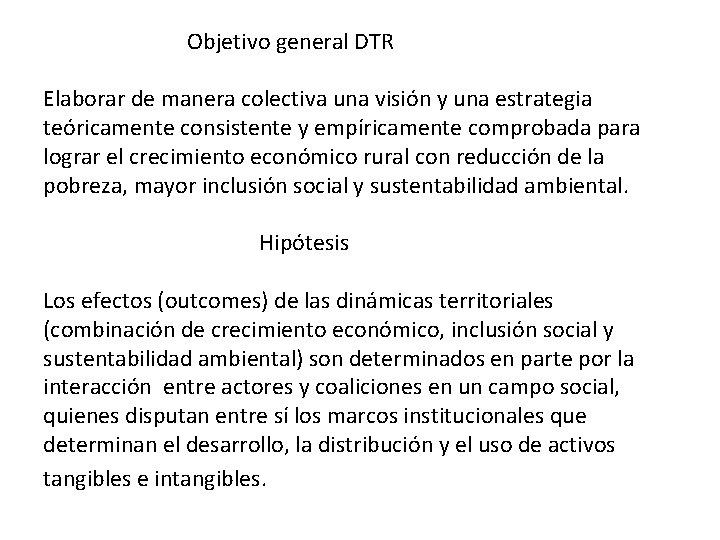 Objetivo general DTR Elaborar de manera colectiva una visión y una estrategia teóricamente consistente