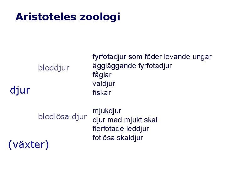 Aristoteles zoologi bloddjur fyrfotadjur som föder levande ungar äggläggande fyrfotadjur fåglar valdjur fiskar mjukdjur