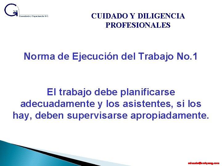 CUIDADO Y DILIGENCIA PROFESIONALES Norma de Ejecución del Trabajo No. 1 El trabajo debe
