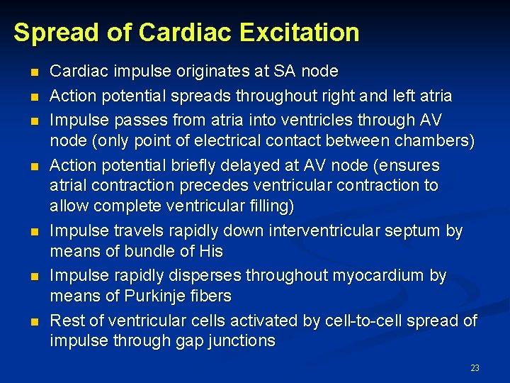 Spread of Cardiac Excitation n n n Cardiac impulse originates at SA node Action