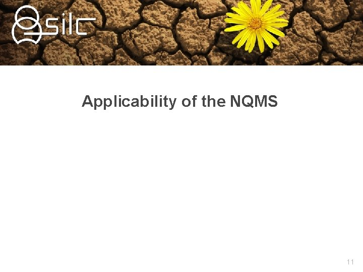 Applicability of the NQMS 11