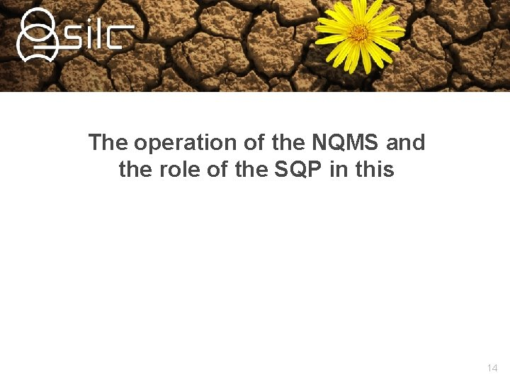 The operation of the NQMS and the role of the SQP in this 14