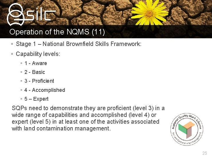 Operation of the NQMS (11) § Stage 1 – National Brownfield Skills Framework: §