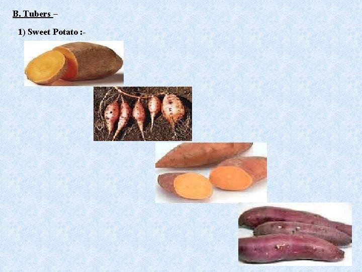 B. Tubers – 1) Sweet Potato : -