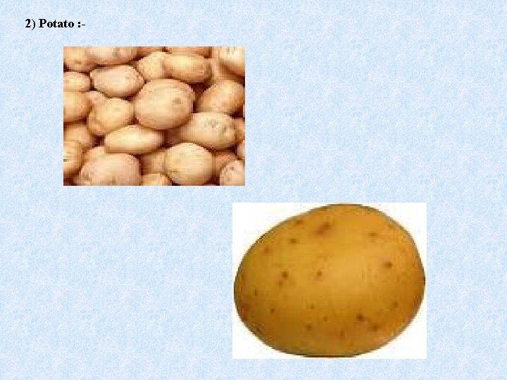 2) Potato : -