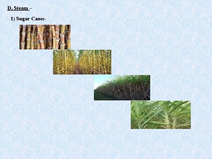 D. Steam – 1) Sugar Cane: -