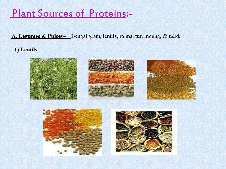 Plant Sources of Proteins: A. Legumes & Pulses– 1) Lentils Bengal gram, lentils, rajma,