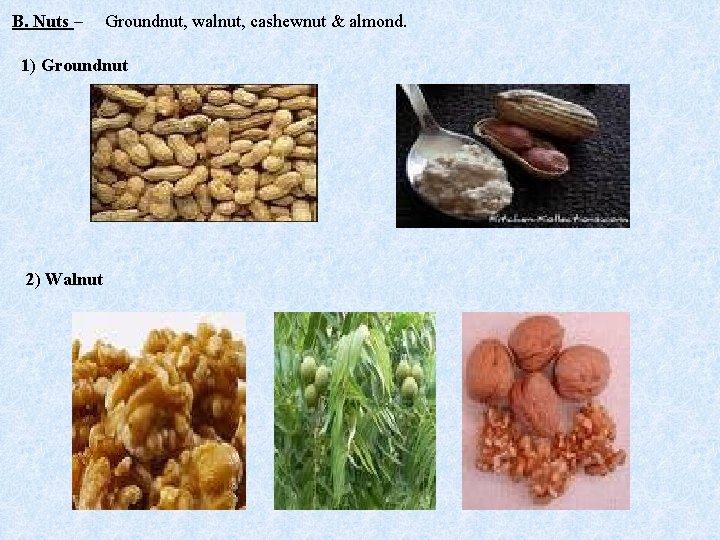 B. Nuts – Groundnut, walnut, cashewnut & almond. 1) Groundnut 2) Walnut
