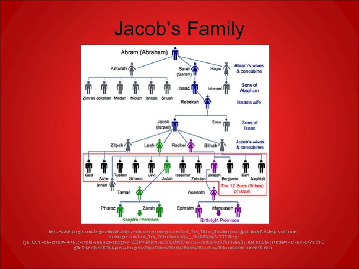 Jacob's Family http: //www. google. com/imgres? imgurl=http: //reluctant-messenger. com/Lost_Ten_Tribes_files/image 004. jpg&imgrefurl=http: //reluctantmessenger. com/Lost_Ten_Tribes. htm&usg=__JRp.