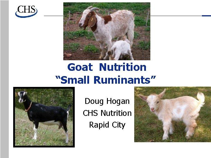 "Goat Nutrition ""Small Ruminants"" Doug Hogan CHS Nutrition Rapid City"