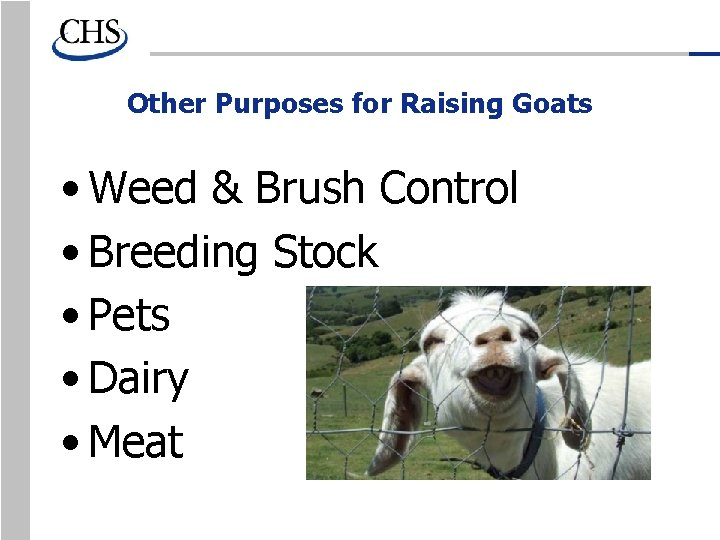 Other Purposes for Raising Goats • Weed & Brush Control • Breeding Stock •