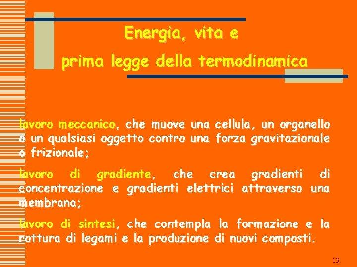 Energia, vita e prima legge della termodinamica lavoro meccanico, che muove una cellula, un