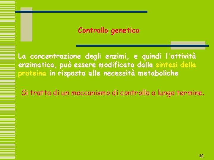 Controllo genetico La concentrazione degli enzimi, e quindi l'attività enzimatica, può essere modificata dalla