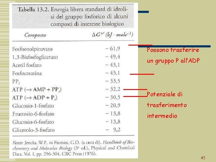 Possono trasferire un gruppo P all'ADP Potenziale di trasferimento intermedio 45