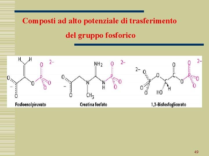 Composti ad alto potenziale di trasferimento del gruppo fosforico 49