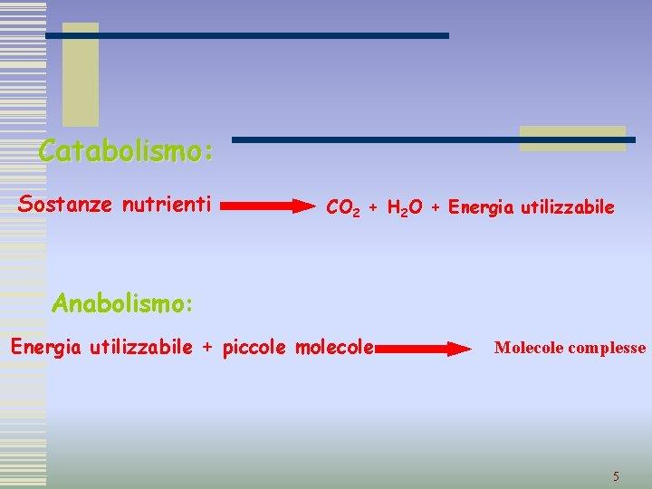 Catabolismo: Sostanze nutrienti CO 2 + H 2 O + Energia utilizzabile Anabolismo: Energia