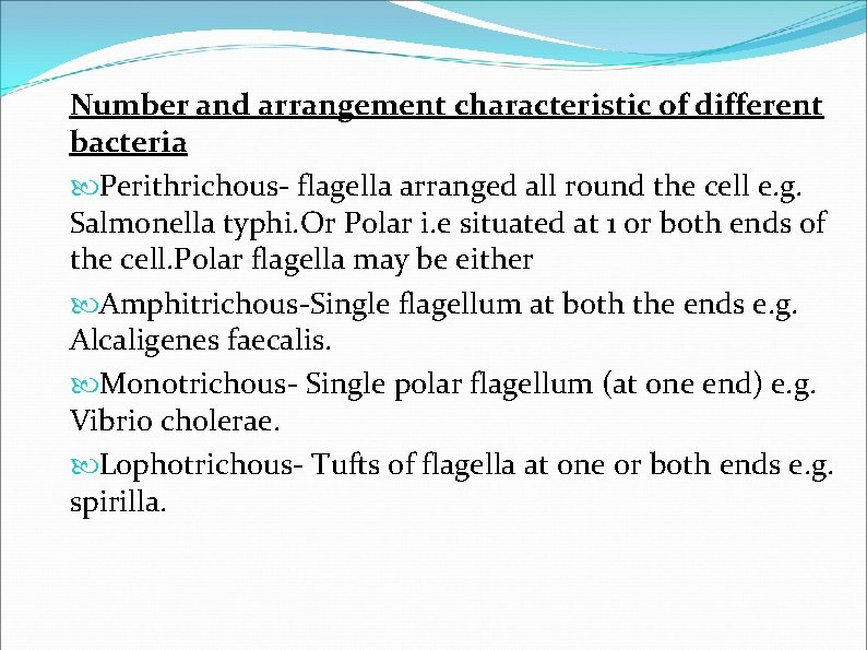 Number and arrangement characteristic of different bacteria Perithrichous- flagella arranged all round the cell
