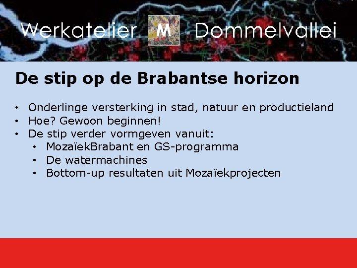 De stip op de Brabantse horizon • Onderlinge versterking in stad, natuur en productieland