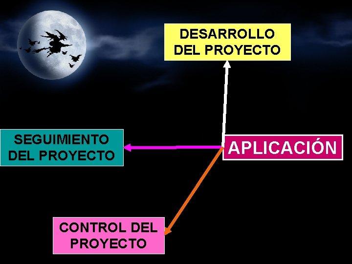 DESARROLLO DEL PROYECTO SEGUIMIENTO DEL PROYECTO CONTROL DEL PROYECTO APLICACIÓN