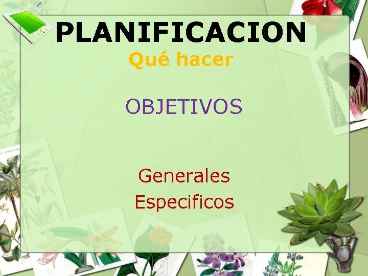 PLANIFICACION Qué hacer OBJETIVOS Generales Especificos