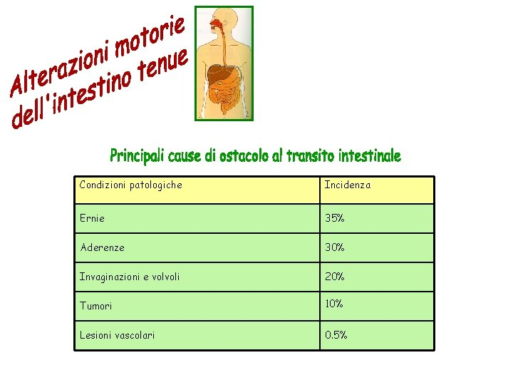 Condizioni patologiche Incidenza Ernie 35% Aderenze 30% Invaginazioni e volvoli 20% Tumori 10% Lesioni