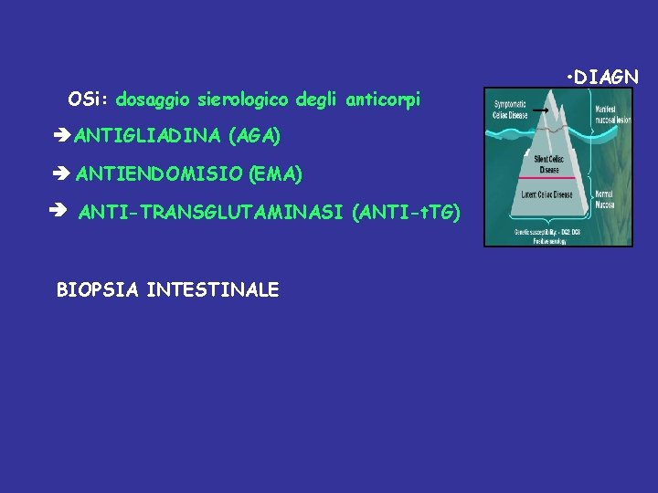 OSi: dosaggio sierologico degli anticorpi ANTIGLIADINA (AGA) ANTIENDOMISIO (EMA) ANTI-TRANSGLUTAMINASI (ANTI-t. TG) BIOPSIA INTESTINALE