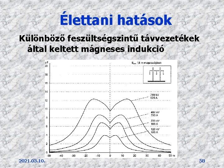 Élettani hatások Különböző feszültségszintű távvezetékek által keltett mágneses indukció 2021. 03. 10. 58