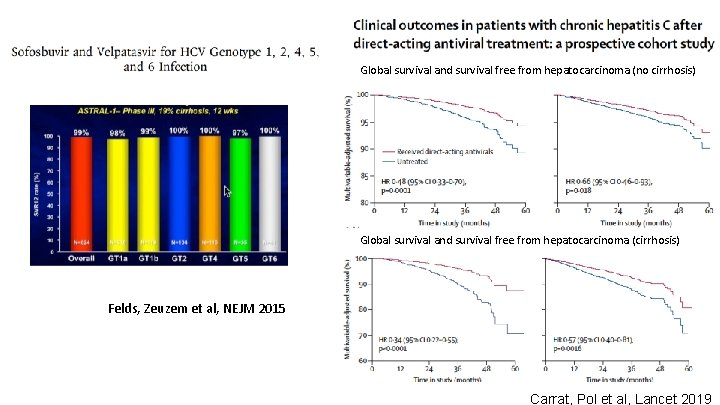 Global survival and survival free from hepatocarcinoma (no cirrhosis) Global survival and survival free