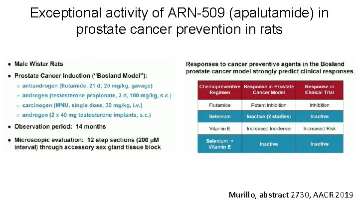 Exceptional activity of ARN-509 (apalutamide) in prostate cancer prevention in rats Murillo, abstract 2730,