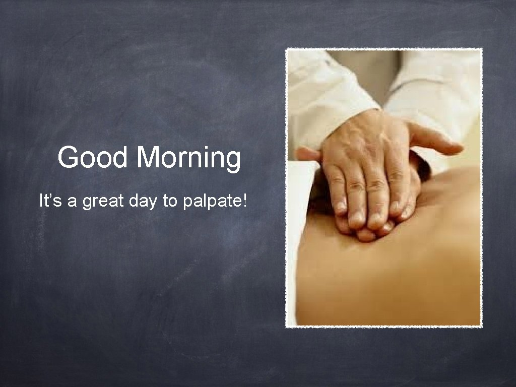 Good Morning It's a great day to palpate!