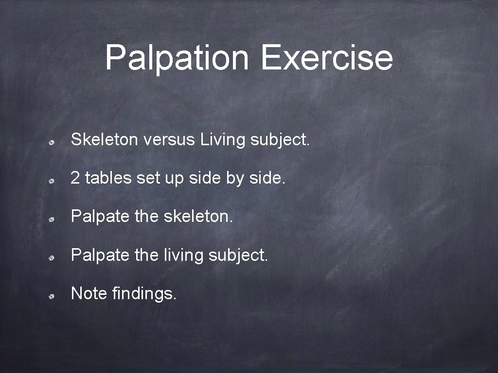 Palpation Exercise Skeleton versus Living subject. 2 tables set up side by side. Palpate