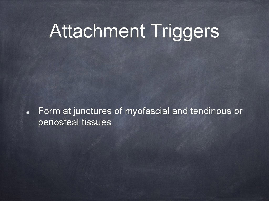 Attachment Triggers Form at junctures of myofascial and tendinous or periosteal tissues.
