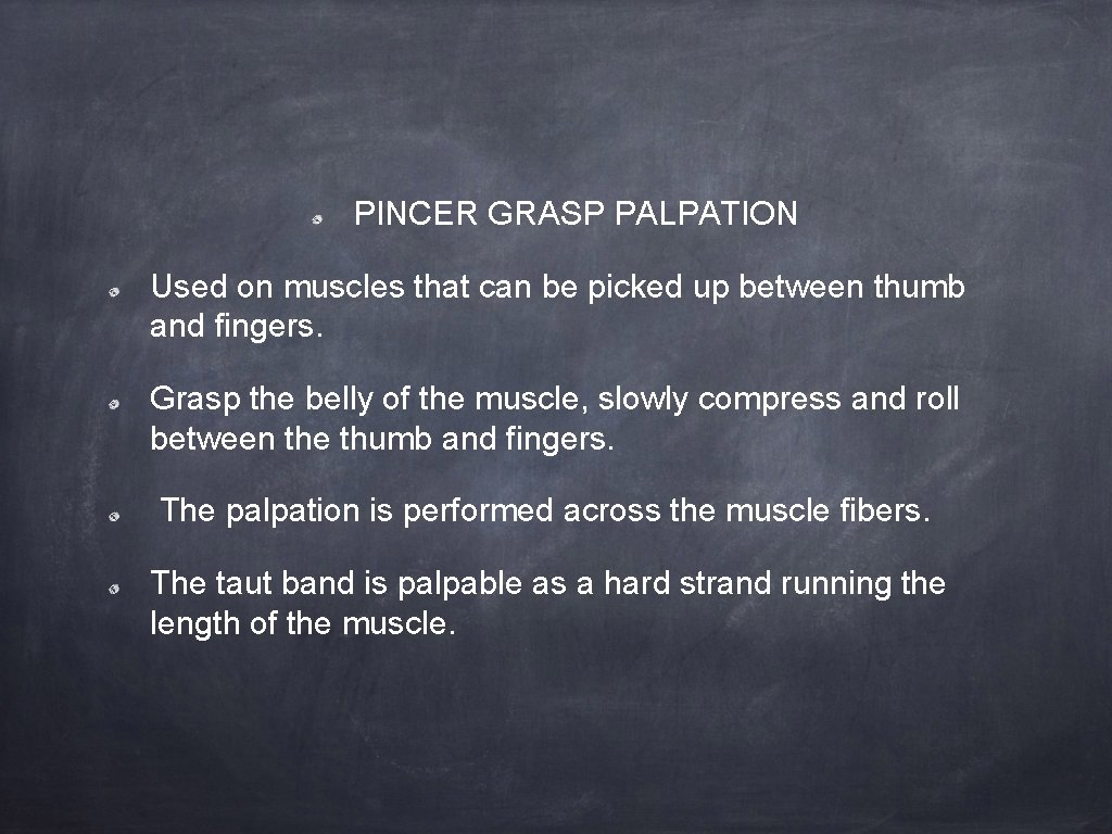 PINCER GRASP PALPATION Used on muscles that can be picked up between thumb and