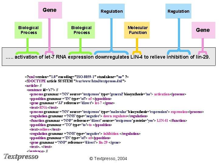 Gene Biological Process Regulation Molecular Function Gene …. . activation of let-7 RNA expression