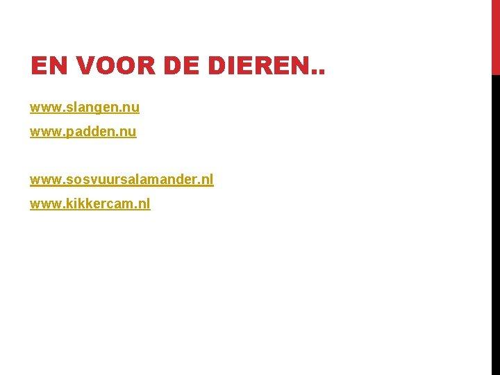 EN VOOR DE DIEREN. . www. slangen. nu www. padden. nu www. sosvuursalamander. nl