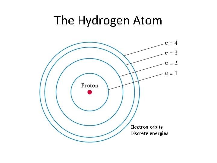 The Hydrogen Atom Electron orbits Discrete energies