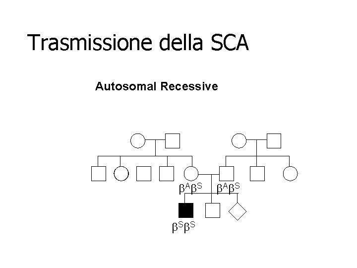 Trasmissione della SCA Autosomal Recessive b. Ab. S b. Ab. S