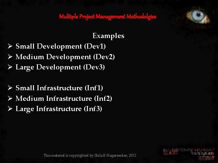 Multiple Project Management Methodolgies Examples Ø Small Development (Dev 1) Ø Medium Development (Dev
