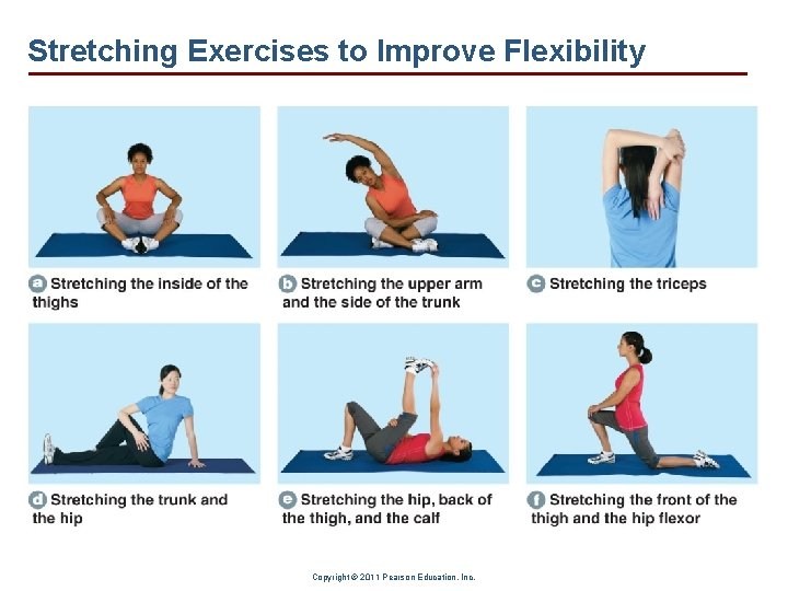 Stretching Exercises to Improve Flexibility Copyright © 2011 Pearson Education, Inc.