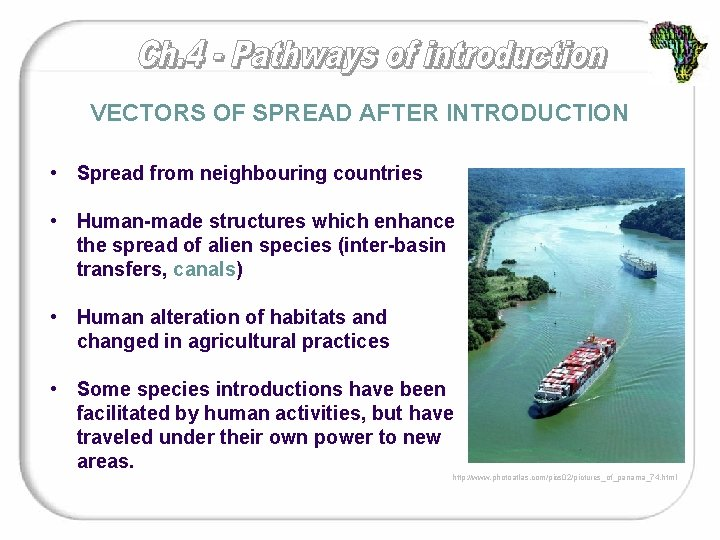 VECTORS OF SPREAD AFTER INTRODUCTION • Spread from neighbouring countries • Human-made structures which