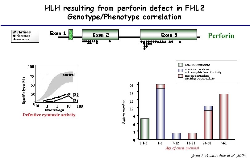 HLH resulting from perforin defect in FHL 2 Genotype/Phenotype correlation Exon 1 Mutations Nonsense