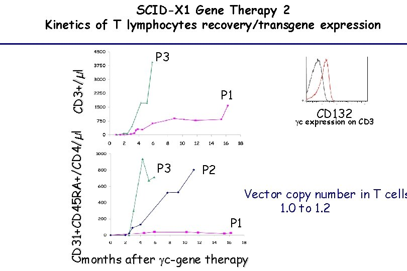 SCID-X 1 Gene Therapy 2 Kinetics of T lymphocytes recovery/transgene expression CD 3+/µl P